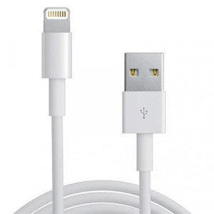 Apple Original Lightning to USB Cable 1m